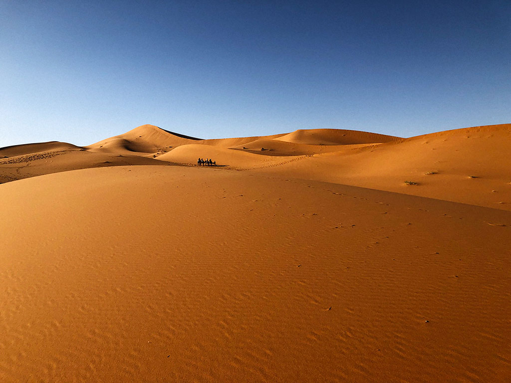 Imagen desierto 1001 Tours Morocco Dunas