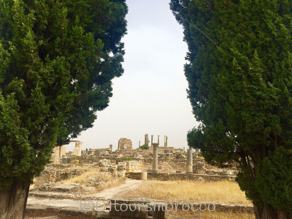 Volubilis 1001 Tours Morocco