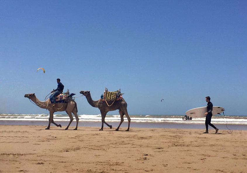 1001 Tours Morocco